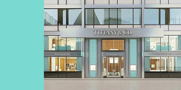 Priyanka Chopras Engagement Ring Tiffany Co Store