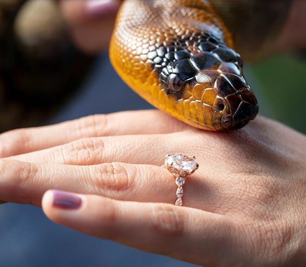 Bindi Irwins Engagement Ring Initial Debut