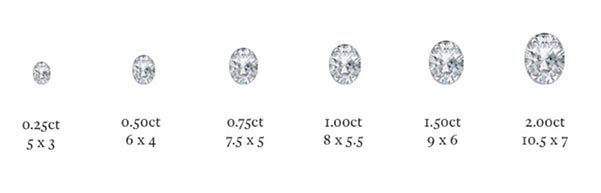 Bindi Irwins Engagement Ring Oval Diamond Size Chart
